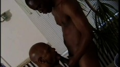 Ebony stud gets his dick sucked and his ass fucked by his black lover