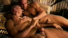 Two hot muscled guys engage in passionate gay action on the bed