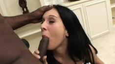Dark-haired hottie Renee Pornero loves playing with a stiff black cock