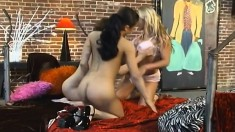 Hot and horny Latina lesbians are all over that pussy with tongues and toys