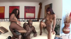 Ebony cuties Coffee and Natalie work their magic on a huge black stick