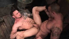 Tattooed stallions exchange oral pleasures and indulge in anal action
