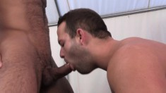 Hunky stud gets a taste of his partner's cock and then drills his ass