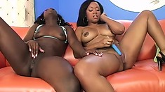 Two marvelous black babes take care of each other's lesbian desires on the couch