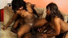 Two ebony beauties take turns passionately sucking and fucking a huge black rod