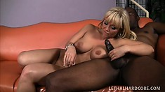 Attractive babe Austin Taylor gets plowed by a gigantic black rod